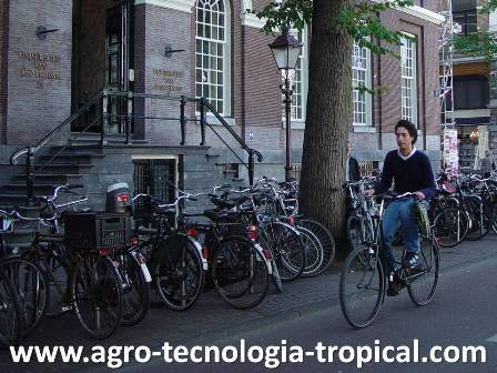 Universidad de Amsterdam